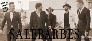 Salebarbes